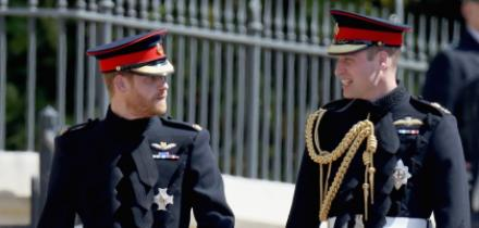principe harry y principe william, fondo conmemorativo princesa diana, princesa diana dinero dividido harry y william